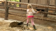 HD: Cleaning Horse Manure video