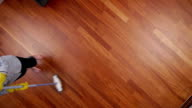 cleaning lady overhead broom video