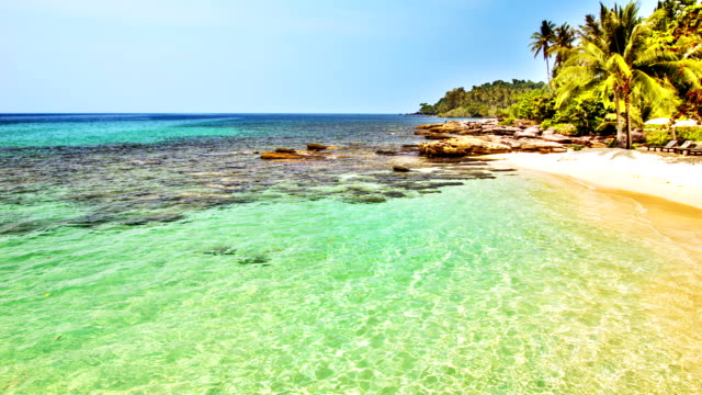 Clear water and tropical beach video