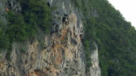 Cliff of rock mountain the island video