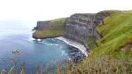 Cliffs of Moher and Atlantic Ocean. video
