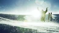 Climber Success Pose Beautiful Mountain Ski Hiking video