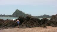 (HD1080i) Climbing Volcanic Rocks on Remote Beach video