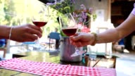 clink wine glasses and drink video