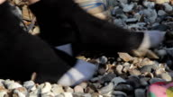 Close Up Adult & Child Nosily Scraping Gravel with Shoes off Socks on (audio) video