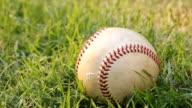 close up baseball video
