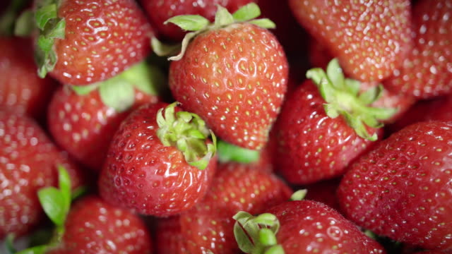 Close Up Detailed Pile of Garden Fresh Picked Strawberries Rotating by Camera video
