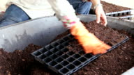 Close up hand woman put in soil peat moss video