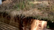 Close up image of the grass eco roof in log house video
