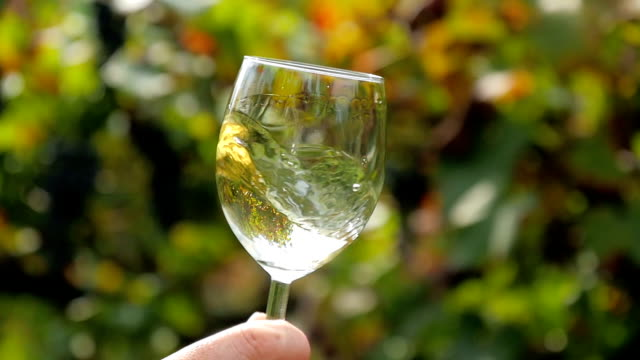 close up of a glass of white wine video