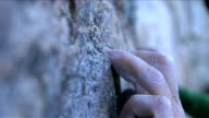 Close up of a rock climber's fingers and boot on the rock as he starts to climb a new route video