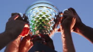Close up of a trophy being held in the air by a sports team video