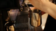 Close up of barista hands steaming milk for a latte or cappuccino video