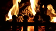 Close Up Of Logs Burning In Grate At Home video