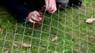 Close up of man using pliers to fix metal wire fencing video