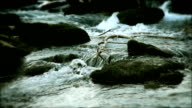 Close up of river video