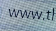 Close up of www address bar cursor blinking video