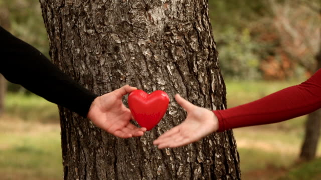 close up of young couple lifting a heart in front of a tree in the park video