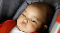 Close up portrait of little cute baby video