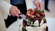 Close up view of a bride and groom cutting their wedding cake in the style of boho with chocolate and fresh berries video