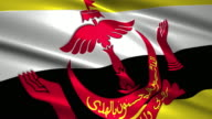 close up waving flag of Brunei,loopable video