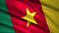 close up waving flag of Cameroon,loopable video