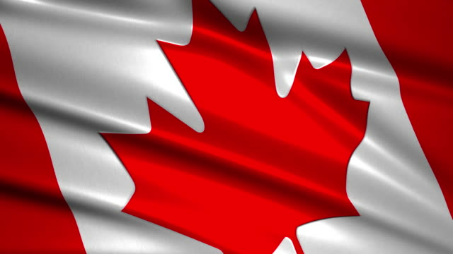 close up waving flag of Canada,loopable video
