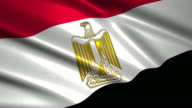 close up waving flag of Egypt,loopable video