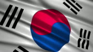 close up waving flag of South Korea,loopable video