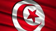 close up waving flag of Tunisia,loopable video