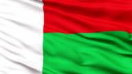 Close Up Waving National Flag of Madagascar video