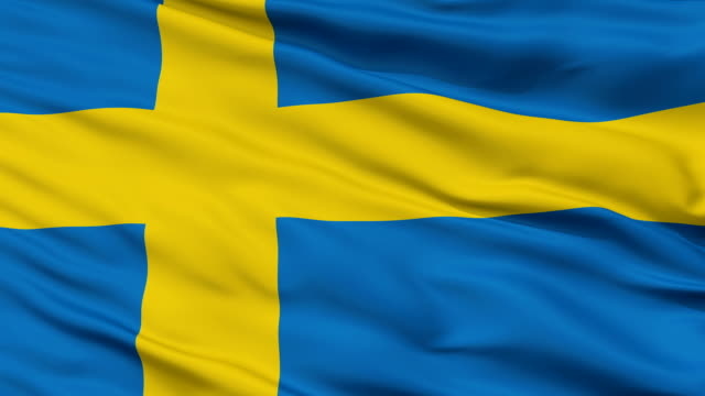 Close Up Waving National Flag of Sweden video