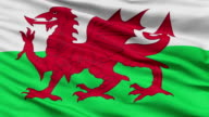 Close Up Waving National Flag of Wales video