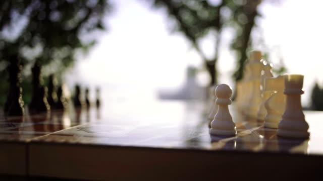 Close up wooden chess pieces on board, dolly shot, close up video
