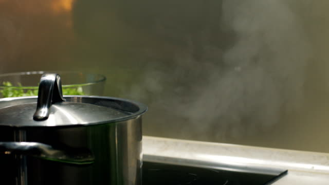Closed pot with boiling water stay on electric cooktop in the kitchen. Pair rises up. video