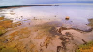 Closer look of the rocky shore in Altja video