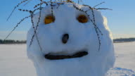 Closer look of the ugly snowman video