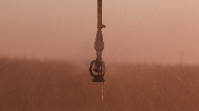 Close-up backlit view of centre pivot irrigatiing vegetables video