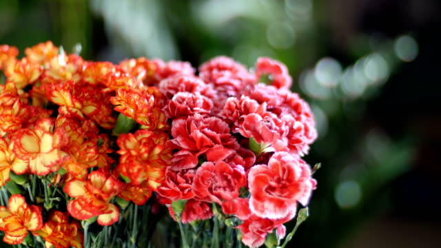 close-up, Flower bouquet in the rays of light, rotation, the floral composition consists of Bright yellow, orange and pink turkish Carnation. In the background a lot of greenery video