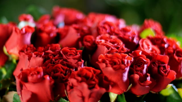 close-up, Flower bouquet in the rays of light, rotation, the floral composition consists of red Roses el toro . in the background a lot of greenery. Divine beauty video