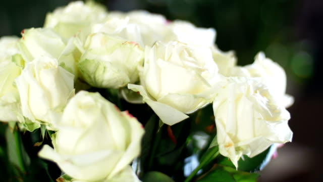 close-up, Flower bouquet in the rays of light, rotation, the floral composition consists white Roses . in the background a lot of greenery. Divine beauty video