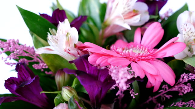 close-up, Flowers, bouquet, rotation on white background, floral composition consists of Russus, Alstroemeria, solidago, gerbera video