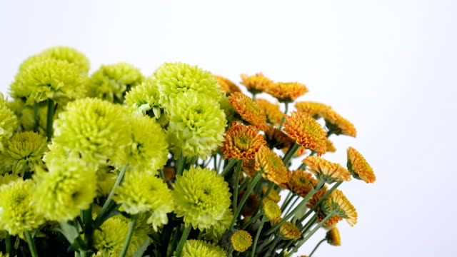 close-up, Flowers, bouquet, rotation on white background, floral composition consists of green and orange Santini video