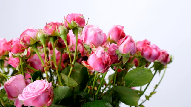 close-up, Flowers, bouquet, rotation on white background, floral composition consists of roses video