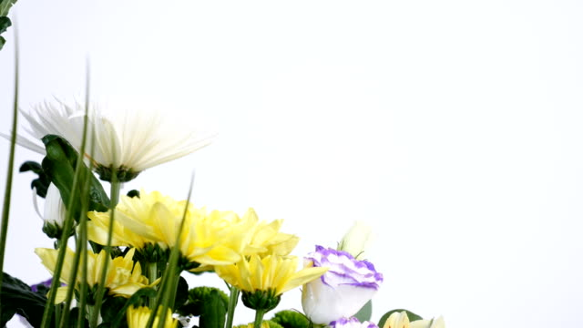 close-up, Flowers, bouquet, rotation on white background, floral composition consists of Orchid vanda, Chrysanthemum, Santini , gypsophila, Alstroemeria, aspidistra, Russus video