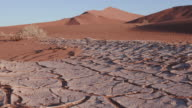 4K close-up moving shot of dried cracked mud inside the Namib-Naukluft National Park video