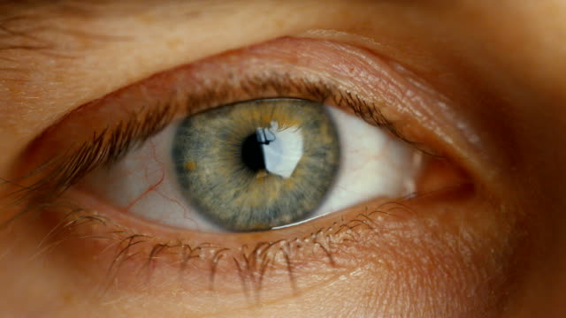 Close-up of a Blinking Man's Eyes. It's Grey with Brown Dots. Dilating Iris. Shot in Warm colours. video