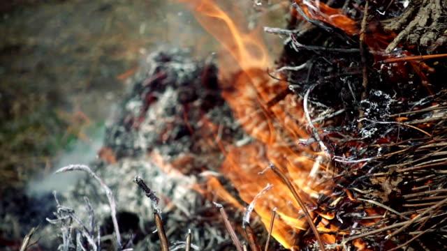 Closeup of beautiful fire slow motion video
