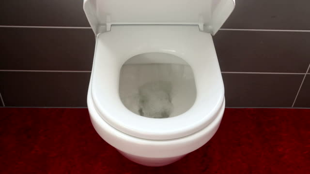 closeup of flushing toilet bowl and lid cover closing automatically video