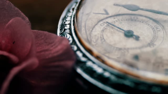 Close-up of pocket watch Next to a gently pink violet flower and passage of time video